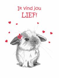 """Valentijnskaart """"Kleintje"""" Konijn"""