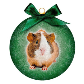 Ornament Frosted Cavia