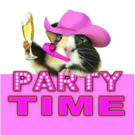 Cavia Kaart Party Time