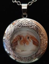 Ketting met medaillon / memory locket  konijn