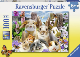 Ravensburger Puzzel Knaagdieren 100 pcs