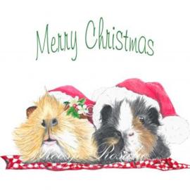 Cadeau Kaartje Cavia Kerst Charlie & BenBen