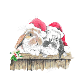 Kerst kaart Konijn Ollie & Flapje