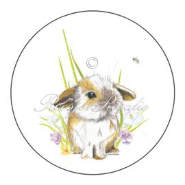 Sticker / sluitzegel Kleintje Konijntje ( 4 stuks)