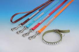 Puppy halsband en lijn GLAMOUR bruin