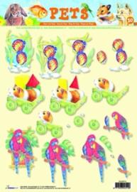 Knipvel Cavia, Papagaai A4 3D knipvel