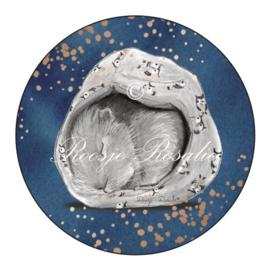 Sticker/ sluitzegel Cavia Star in Heaven