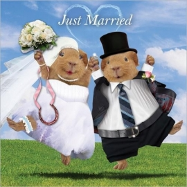 Just Married cavia kaart