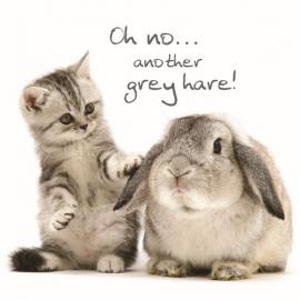 Wenskaart konijn en kitten