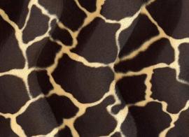 B13 Giraf