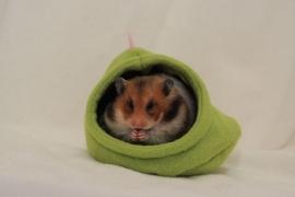 Hamsterren