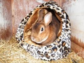 Goudlokje (konijn in theemuts)