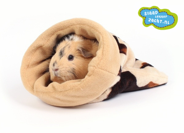 Sleeping bag  25x30 cm