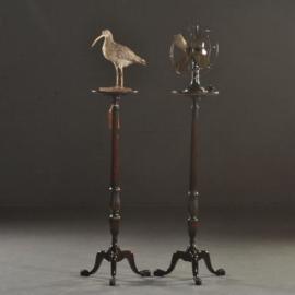 Antieke bijzettafels / Stel mahonie zuiltjes, piedestals of guiridons Hollands ca. 1910 (No.501304)