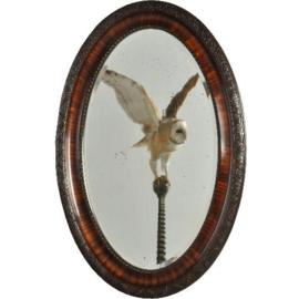 """Antieke spiegels / Ovaal facetgeslepen spiegel ca. 1900  zogenaamde """"Paris Mirror"""" (No.192347)"""