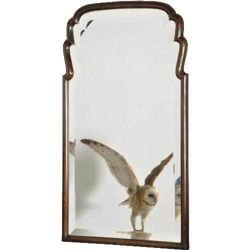 Antieke spiegels / Smalle ranke soester spiegel ca. 1800 met breed facet (No.2721661)