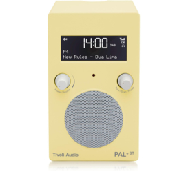 Tivoli Audio Limited Edition PAL+ BT oplaadbare radio met DAB+, FM en Bluetooth,  Anise Flower
