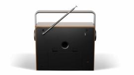 Sharp DR-P350 draagbare stereo DAB+ radio met FM en alarmfunctie