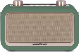 Nordmende Transita 30 draagbare retro DAB+ en FM stereo radio met Bluetooth, groen