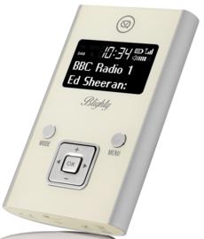 View Quest Blighty DAB+ draagbare zakradio met FM, zilver