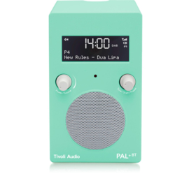 Tivoli Audio Limited Edition PAL+ BT oplaadbare radio met DAB+, FM en Bluetooth, Lucite Green
