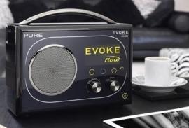 Pure Evoke Flow - DAB+ WIFI FM INTERNET