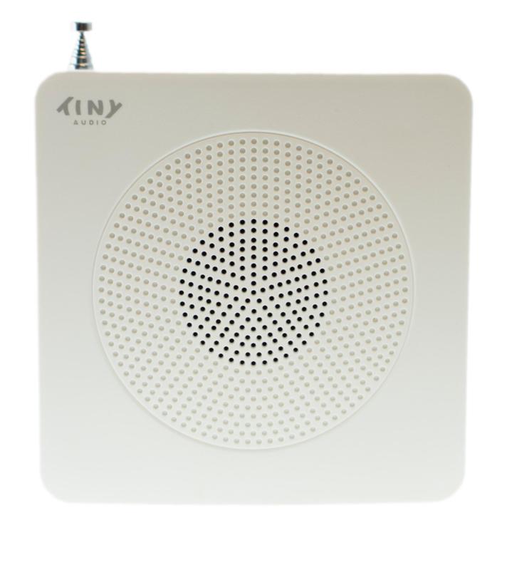 Tiny Audio Travel DAB+ en FM reisradio met wekker en accu, wit