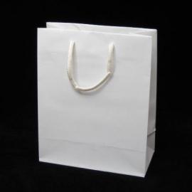 Luxe papieren draagtas glansgelamineerd, formaat 26x12x35cm, WIT, verpakt per 200 stuks