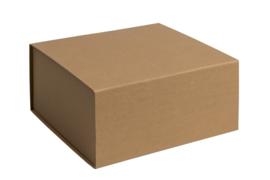 Magneetdoos ongelamineerd, 22,5x23x11cm, verpakt per 25 stuks. Wit, bruin of zwart.