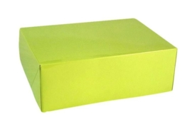 Gift Box GLOSSY 20x14x7cm, LIME, verpakt per 100 stuks