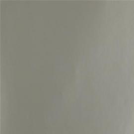 Inpakpapier glanzend 2208-30 SILVER