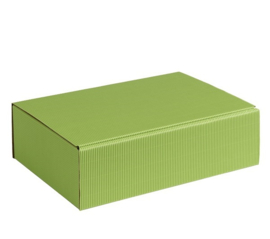 Smartbox, 20x14x7cm, verpakt per 100 stuks (diverse kleuren)