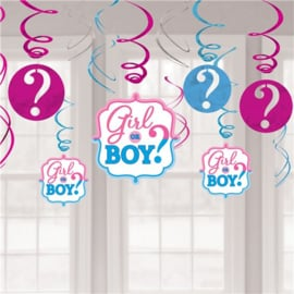 Gender Reveal Hangdecoratie