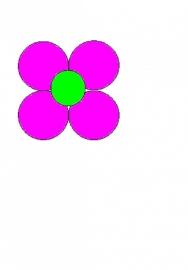 5 Ballonnen bloem