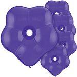 GEO Blossom Purple