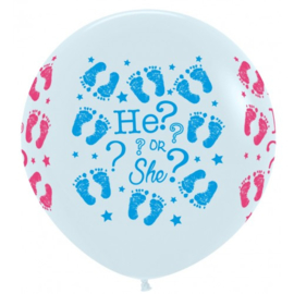 Gender Reveal Ballon Blue or Pink What Do YouThink