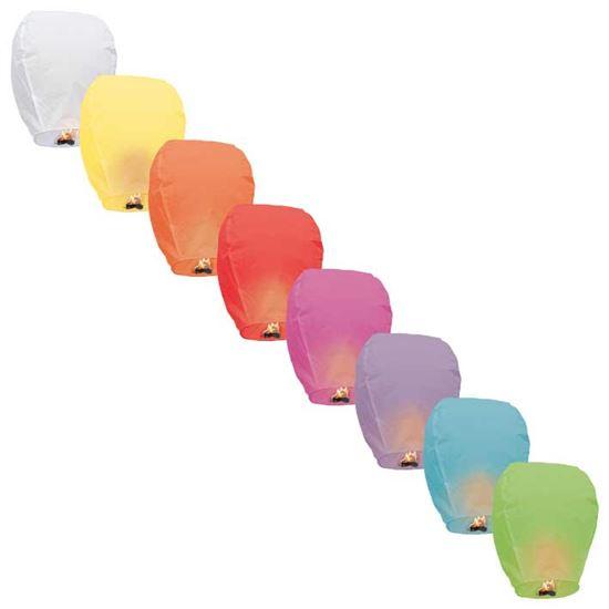 Wensballon Multi Kleur