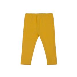 00 LoveStation22 Mini Legging Spectra-Yellow XS9113-12