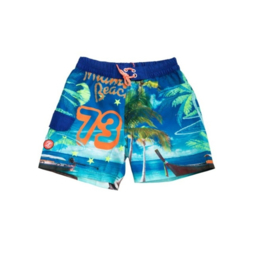 001 ZEE & ZO Willow Miami Beach board short