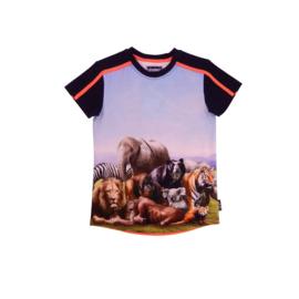 00014  Legends22 Shirt Paolo  20-364