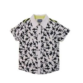 00001 Legends22 shirt Shark wit-zwart 19-168