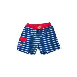ZEE & ZO Willow Blue Stripe board short