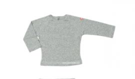 00012 Shirtje longsleeve grijs maat 74