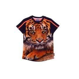 000013  Legends22 Shirt Dandolo 20-351