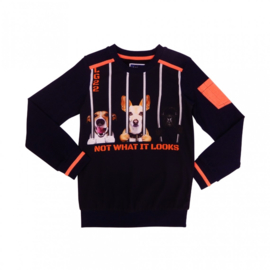 1  Legends22 sweater not what it looks 19-247