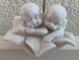 2 BABY,S IN BLOEM FOTOCLIP INCL TULE EN KAARTJE