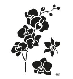 Orchidee sjabloon A4
