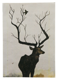 O deer Poster XL Be Pure