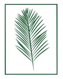 Muursticker Blad Palmblad met kader
