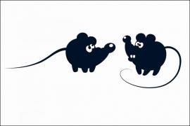 Twin Mice